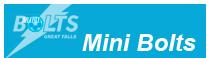 Minibolts